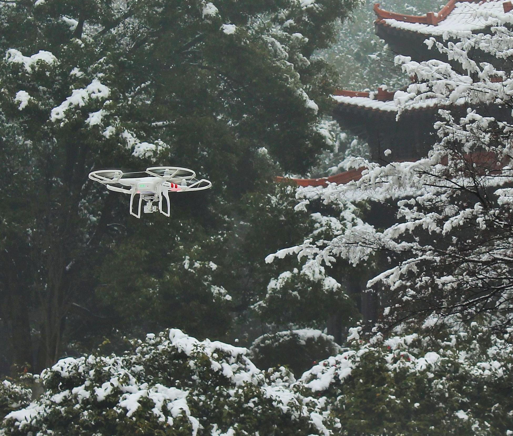 Winter Flying.jpg