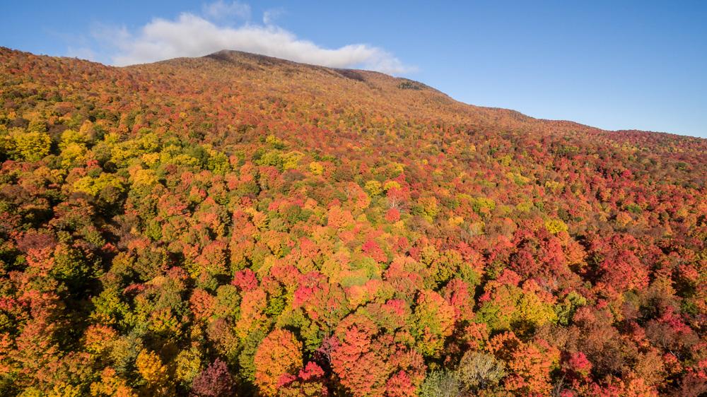 fall_2015-014.jpg
