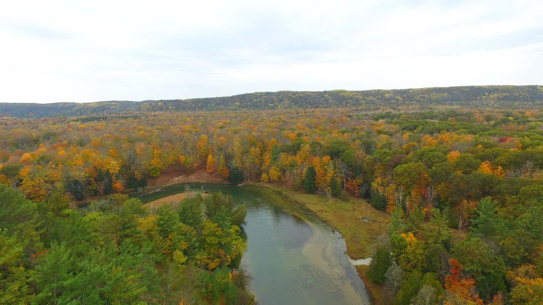 Manistee river, MI