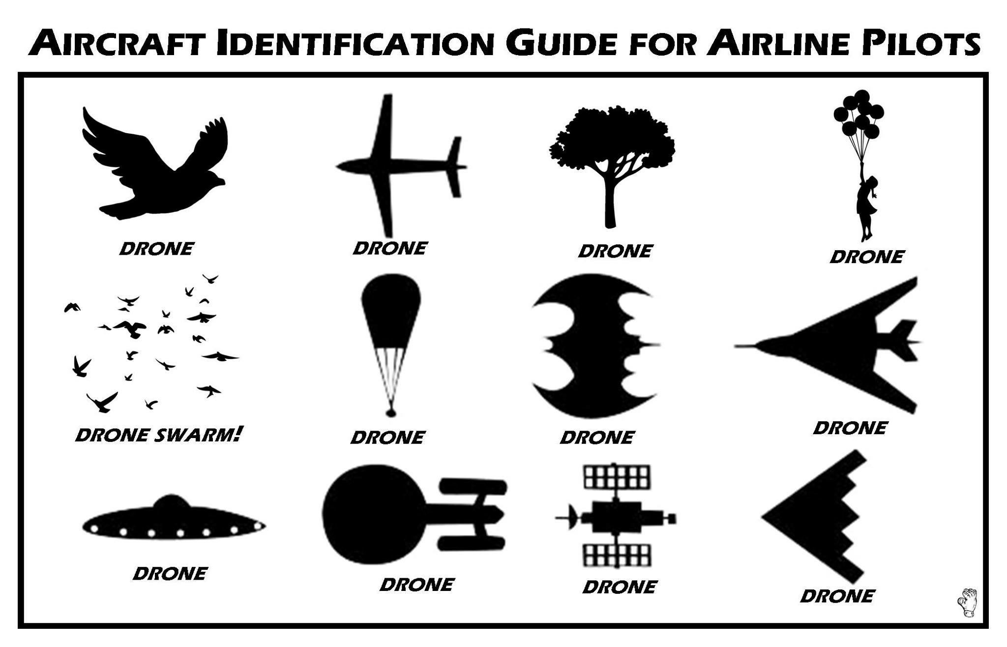 Drone ID chart.jpg