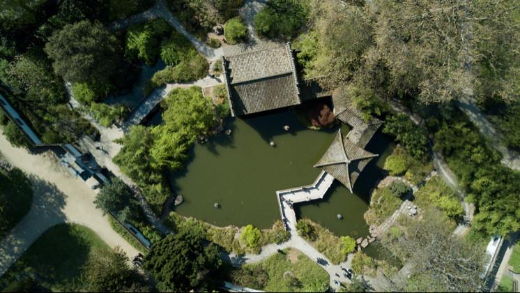 frankfurt_chinese_garden.jpg