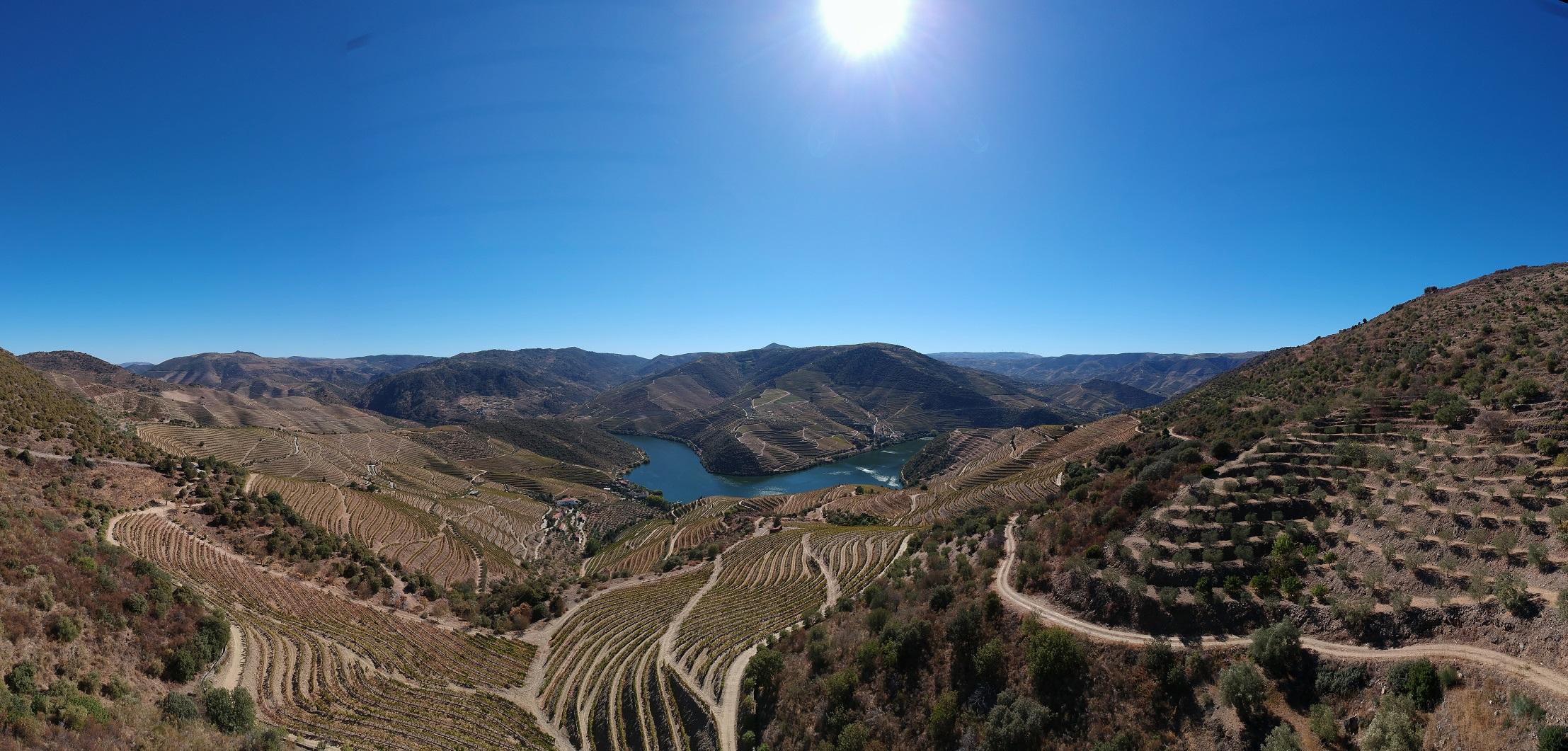 Douro Wine Portugal