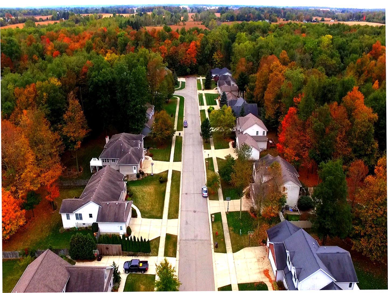 Fall In Michigan USA
