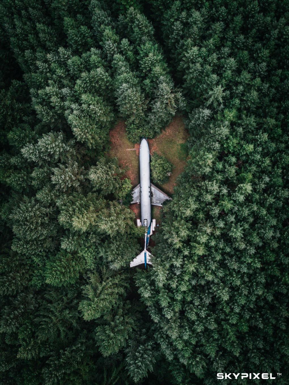 Plane in the woods.jpg