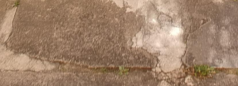 100% bottom part (blurry)