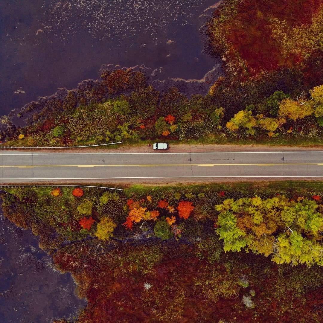 autumn6.jpg