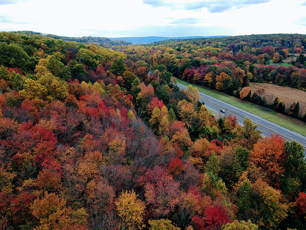 Pennsylvania USA Fall Colors with Spark