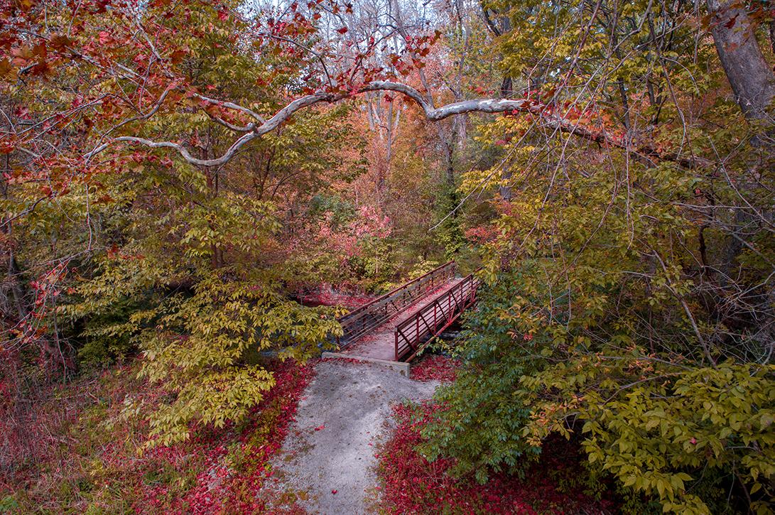 Autumn colors surrounding the footbridge at the creek