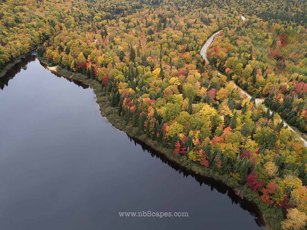Aerial Fall Colours View from Quebec