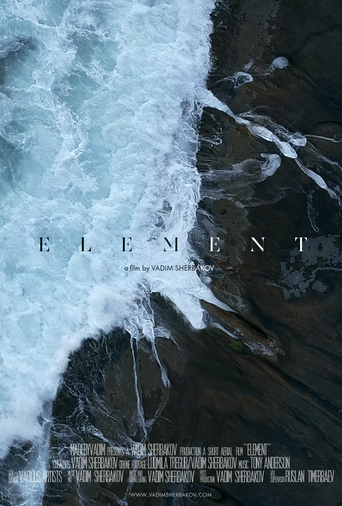 12 Element Cover vertical.jpg