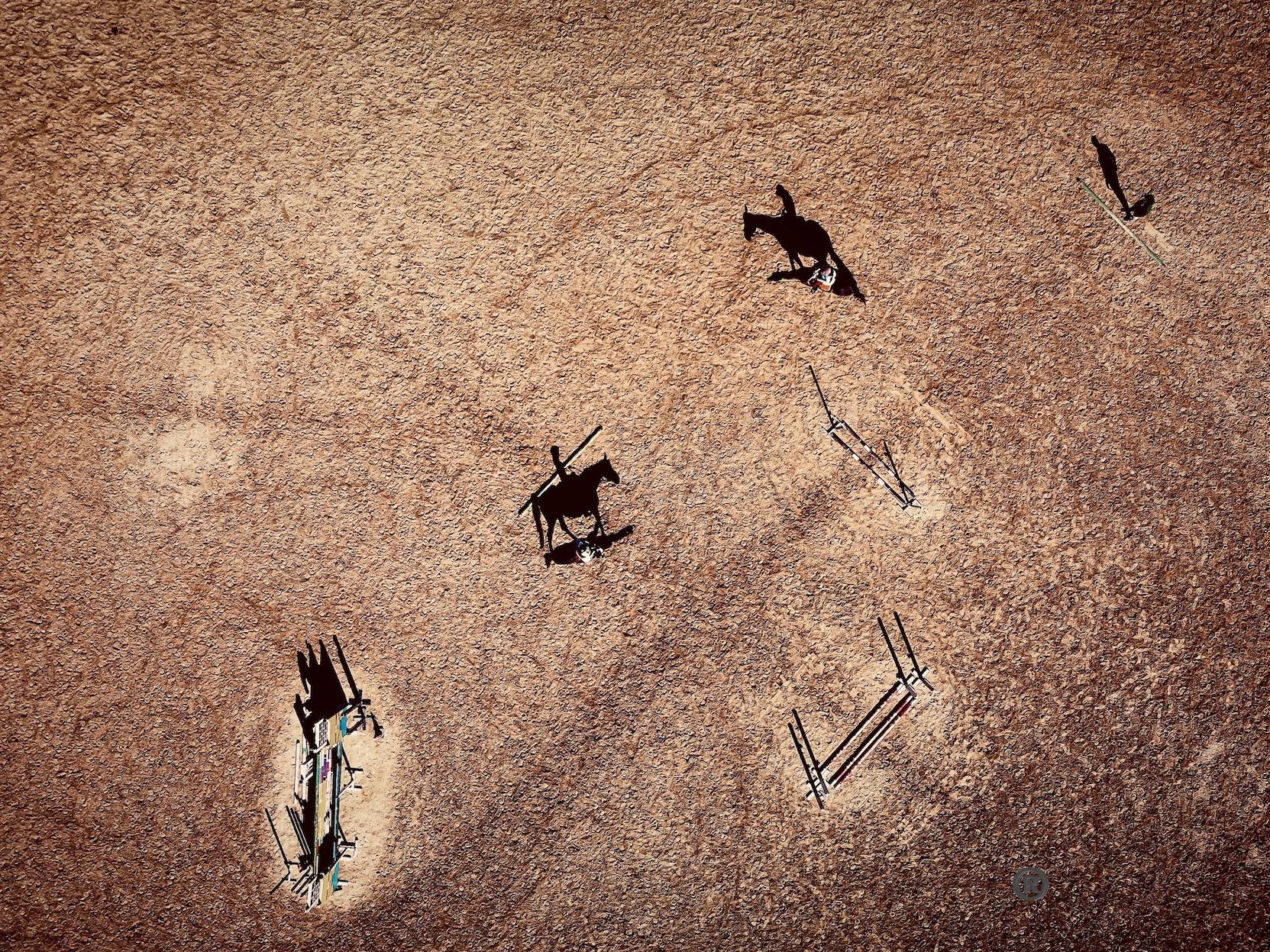 HORSE DJI.jpeg