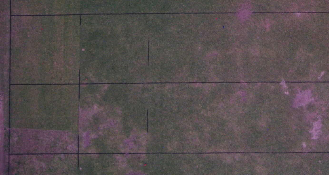 Screen Shot 2019-05-13 at 4.48.37 pm.png