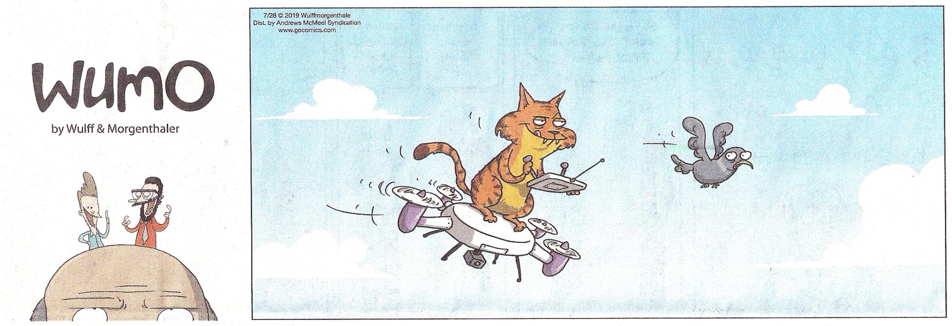 DroneCat.jpg