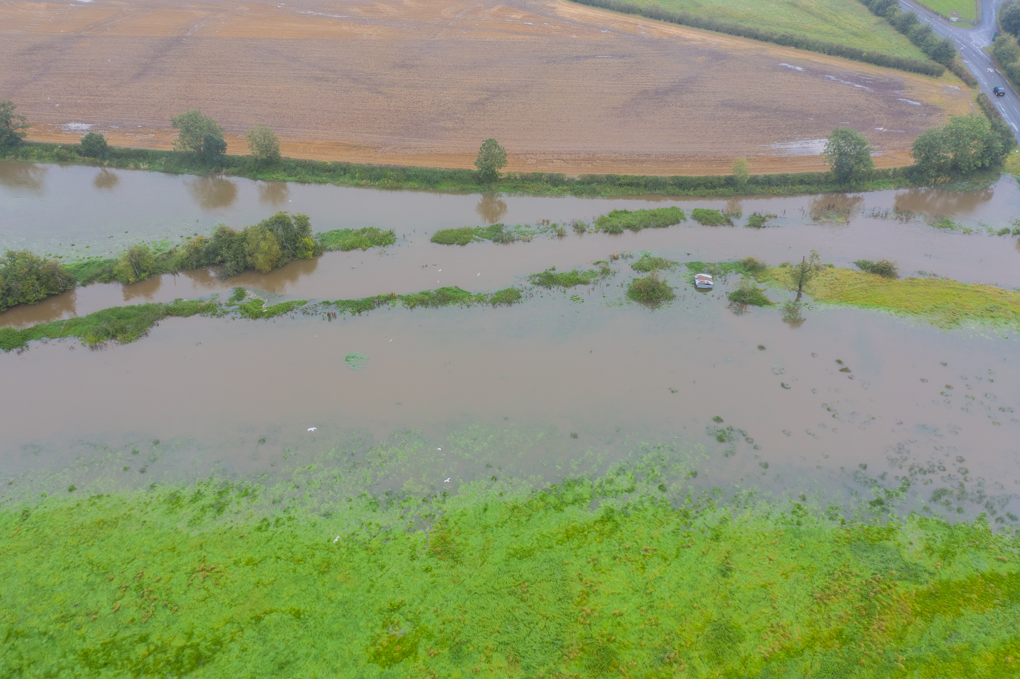 local flooding.