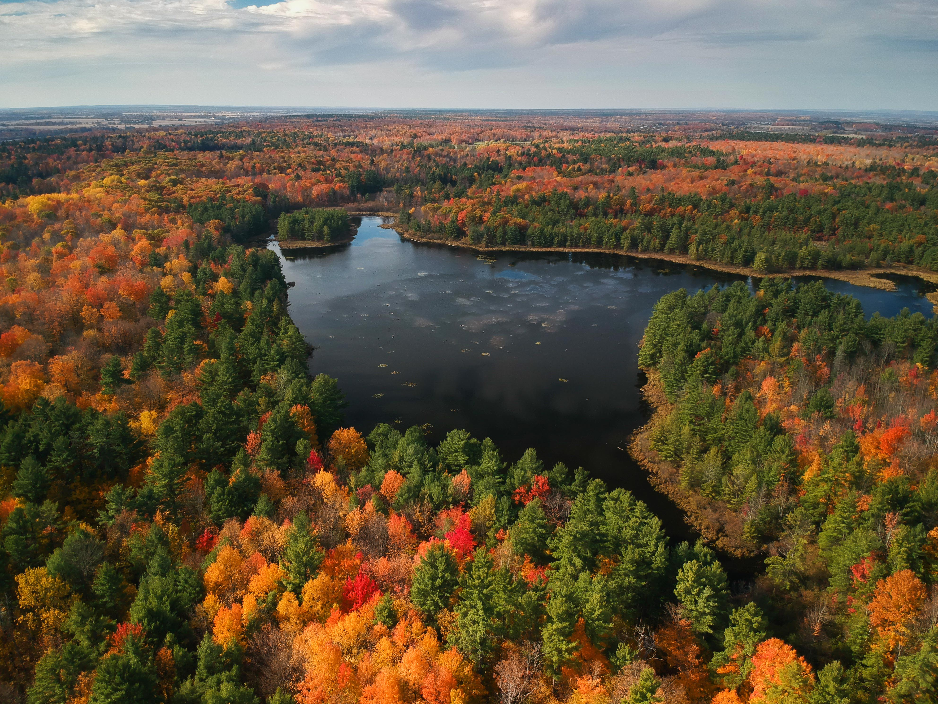 Fall colors in Ontario, Canada