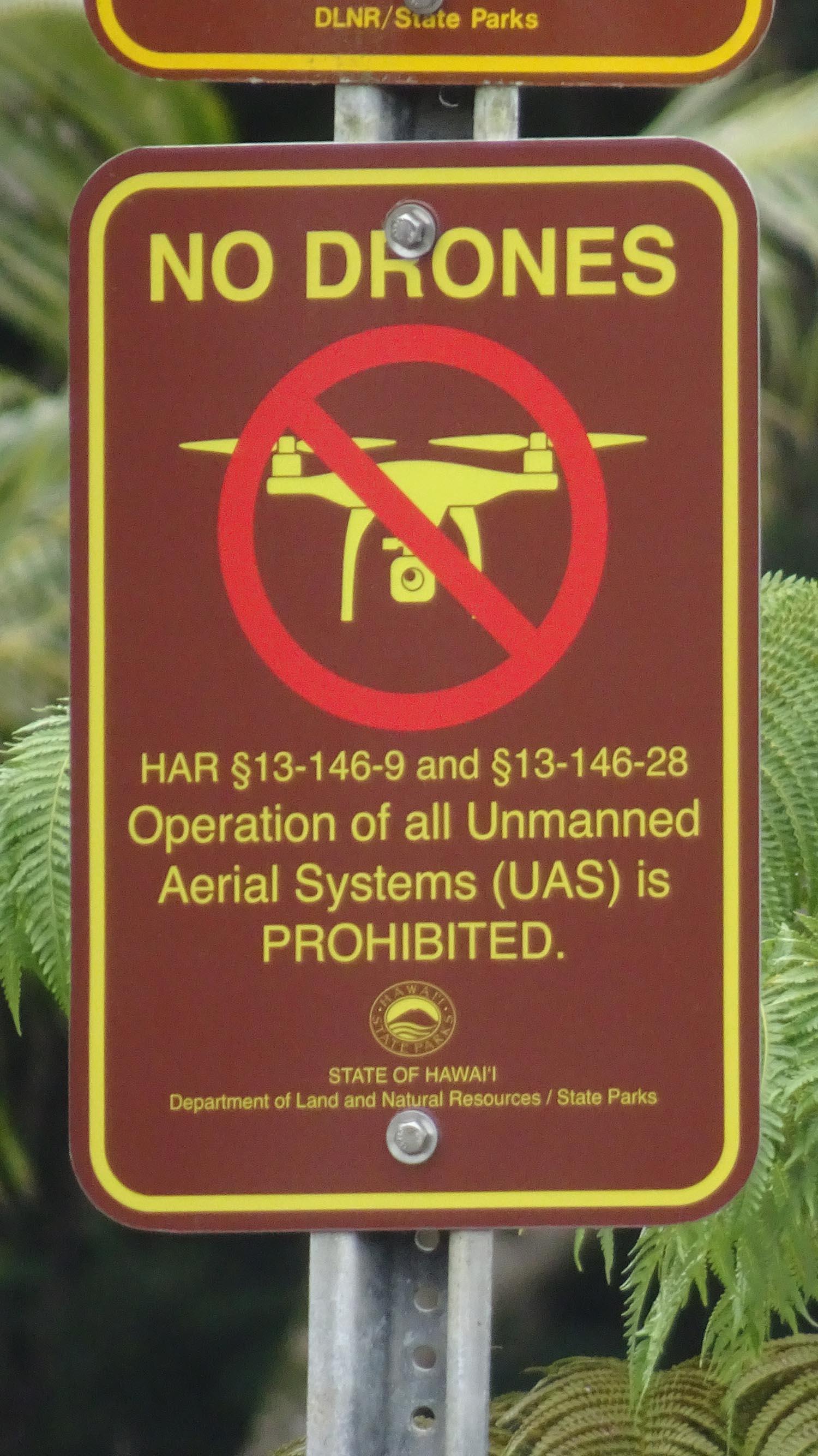 No Drones Hawaii.jpg