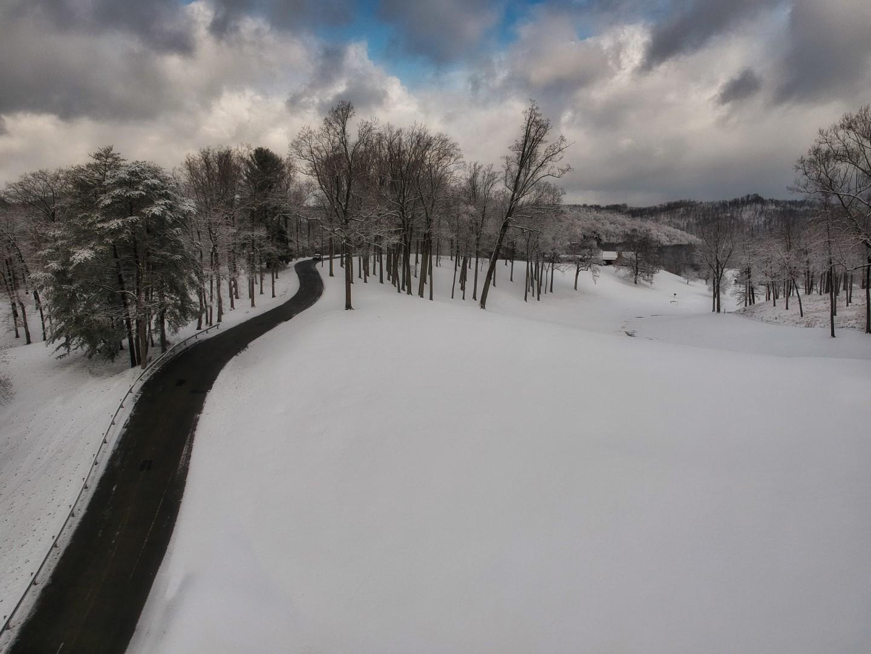 Snow1 (Large).jpg