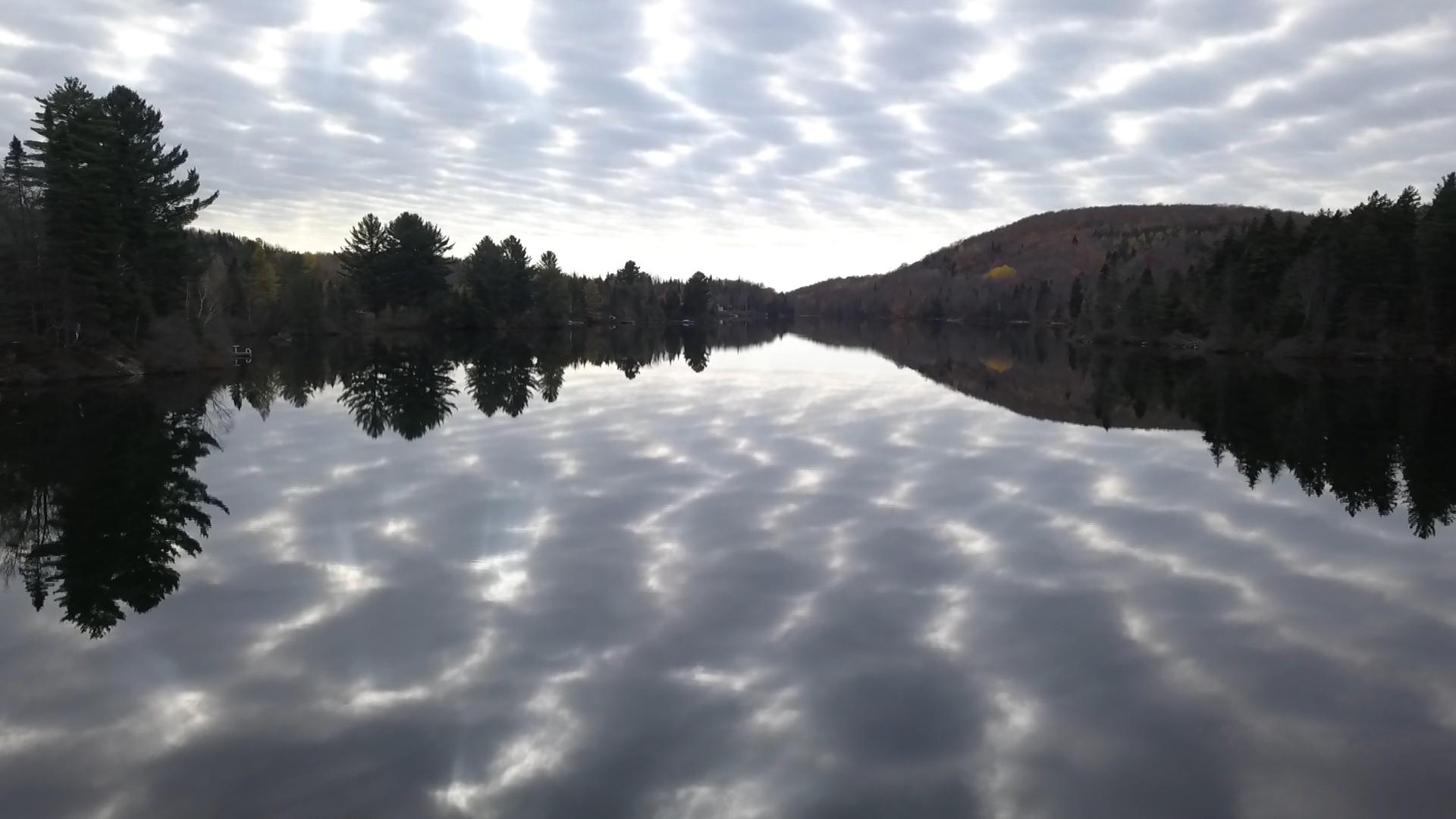 Zebra Lake