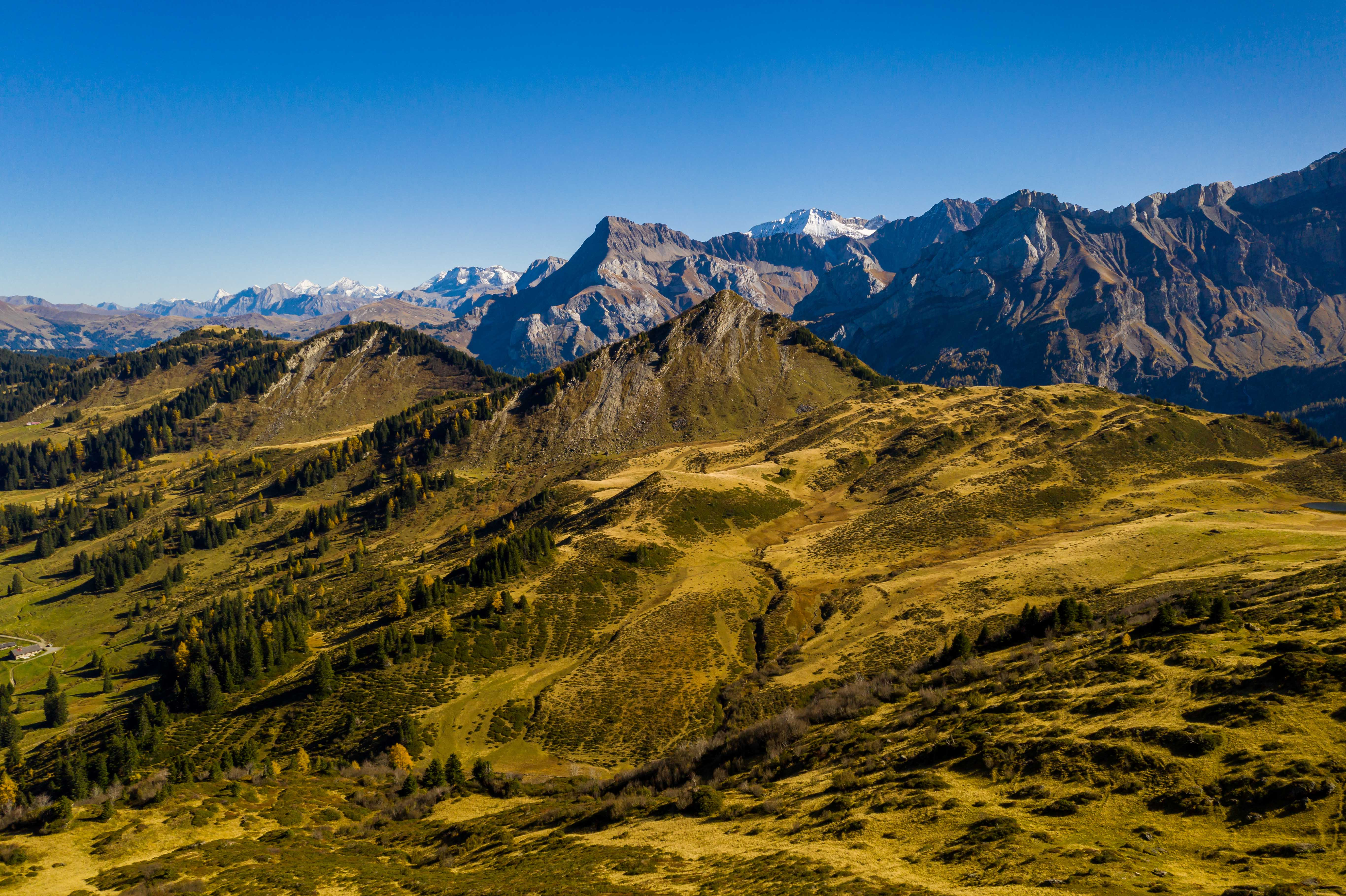 Col du Pillon-La Palette001.jpg