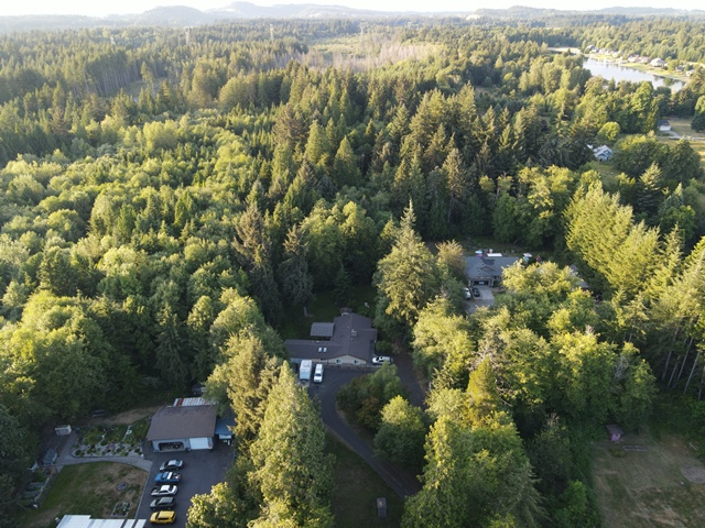 The neighborhood forest